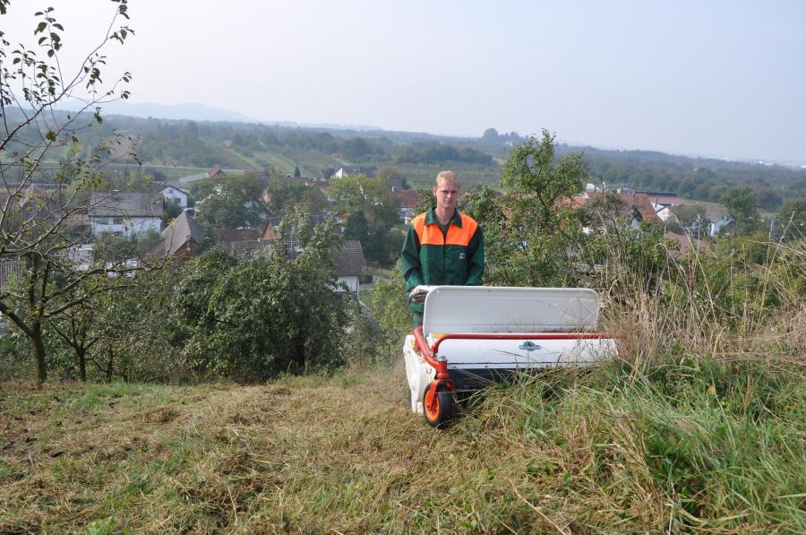 OREC Schlegelmäher HRH 801 HYDRO 80cm